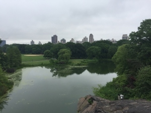 Central Park-view from the castle